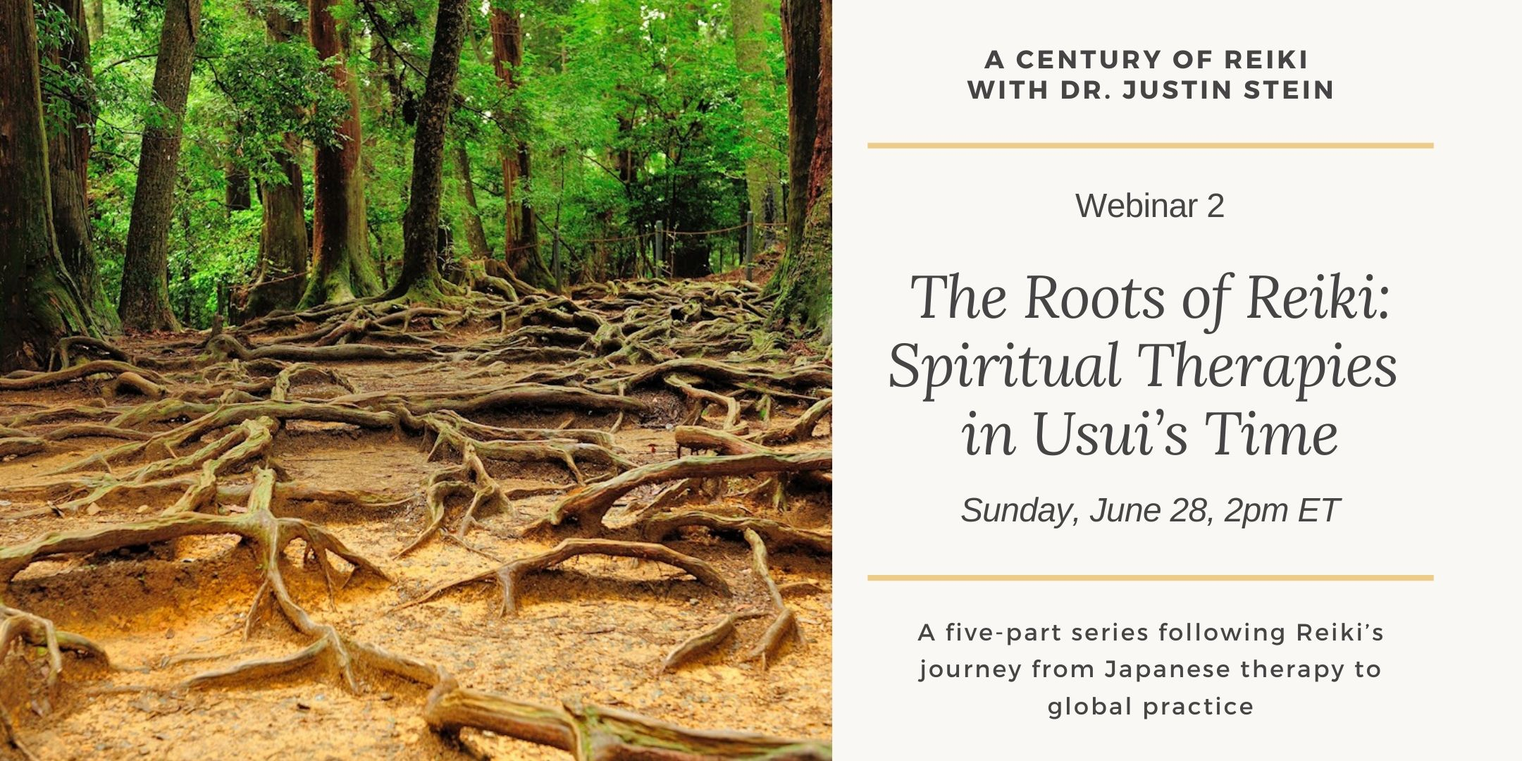 Image for webinar 2 in the series A Century of Reiki with Dr. Justin Stein